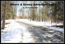 snowy adventure led
