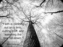 tree-faith-2a