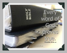 every-word-of-god-proves-true