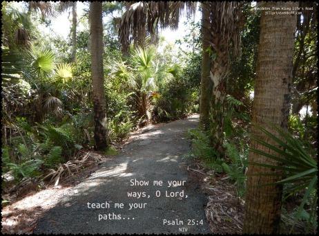 Psalm 25 4 C.jpg