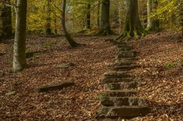 stairs-2928374_1920.jpg
